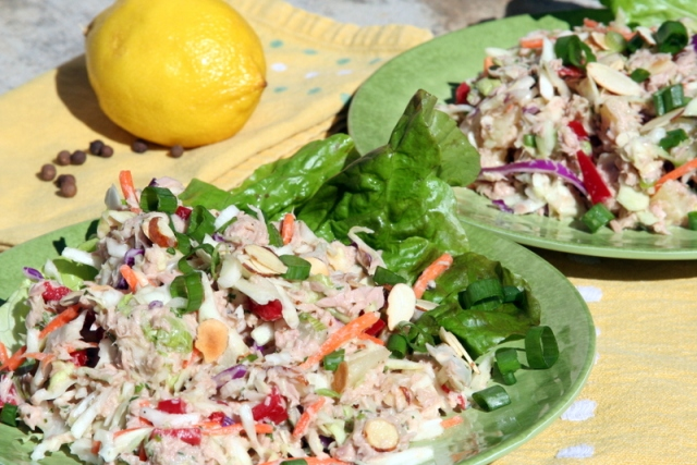 Tropical Tuna Salad with Lemon Ginger Dressing 2015